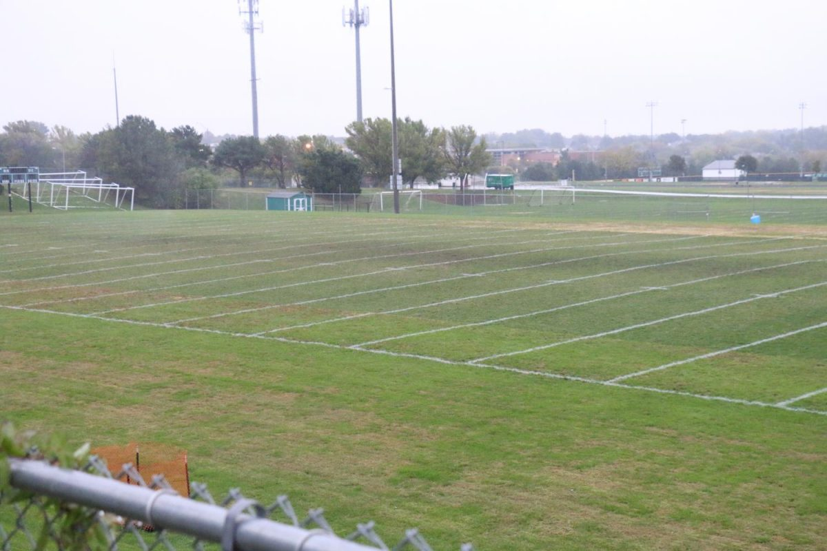 Out with the Old, In with the Turf