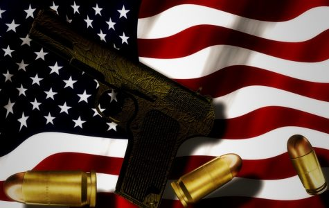Gun Law Comparisons