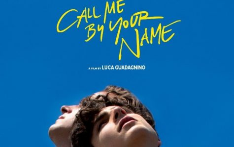 Call Me By Your Name Calling Everyone to the Screens