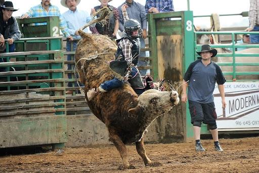 Life of a Rodeo Cowboy