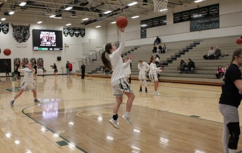 Lincoln Northeast vs Millard West Girls Basketball 02.02.19