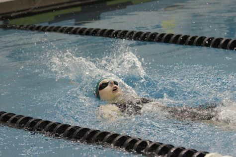 High-water Stakes for the Wildcat Swim Team