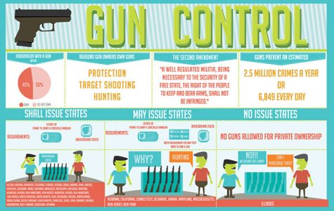 Holes in the gun control system