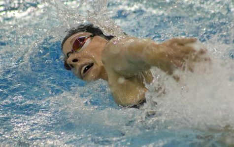 Millard West swimmers competed in a quad with Millard North, Millard South, and Papio.