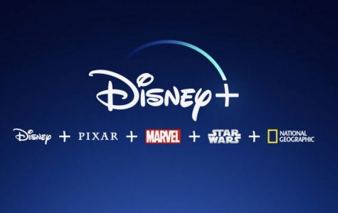 This is the Disney + logo with all of the different categories of items to watch.