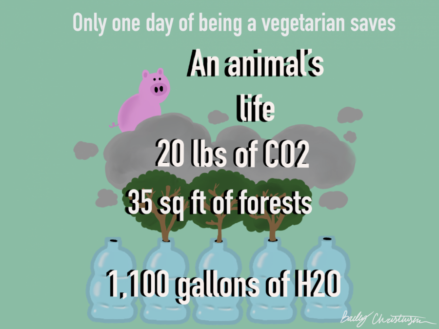 Implementing just one more vegetarian meal into a diet per week can have vast environmental benefits