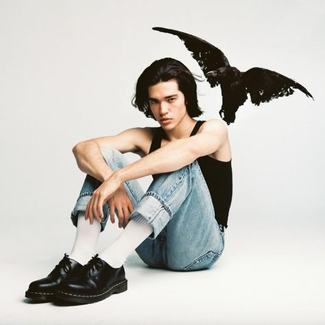 The album cover features Conan Gray in a signature look and a crow at his side. In the past, Conan has created many of his own album covers for his self released singles. He has also produced many of his own music videos.