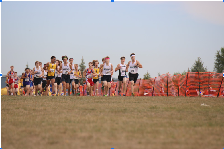 """The wildcats attempted to run together at the start of the meet. Sutphen placed third overall, and first for the Wildcats. """"I think everyone performed very well,"""" Sutphen said. """"We finished in some of the top spots and overall it was a good race."""""""