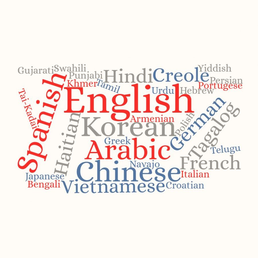 The US Census Bureau found that over 350 languages are spoken in the US. English, Spanish, Chinese, Tagalog and Vietnamese are some of the most common. Even within these languages, there are different dialects and varieties, making the US incredibly linguistically diverse.