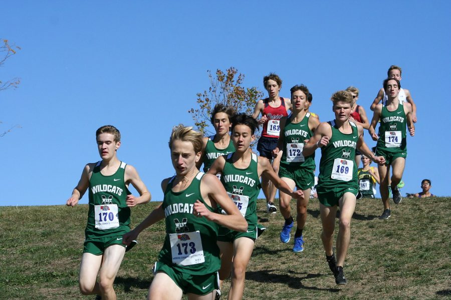 """The Wildcats attempted to stay together during the first part of the race, but they started to split up near the end. The Wildcat top three finishers all had relatively close times to one another, showing they ran as a pack. """"Winning districts was a small step to accomplishing our goal of taking first in state,"""" Marshall said. """"Although we won this race, we realized that state was going to be a close race with all the intense teams competing against us."""""""