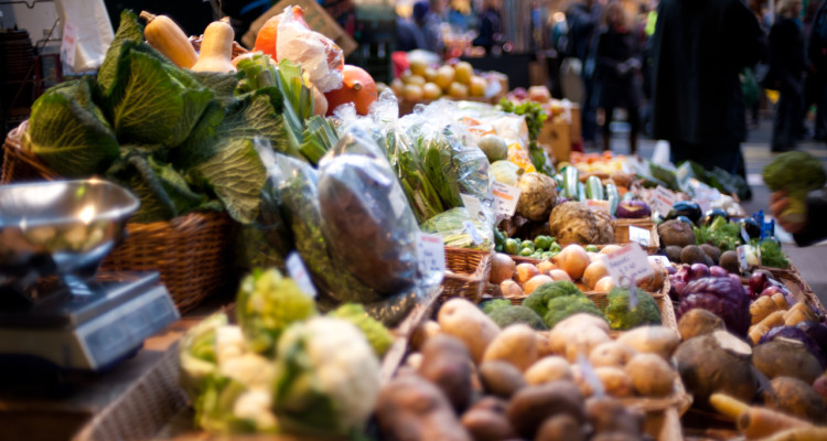 Grocery stores typically have a huge selection of food, however, many of the products are thrown out because of expiration dates, bacteria, mold or cosmetic reasons.