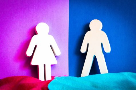 Contrary to popular belief, sex and gender are two very different things. While there is a certain number of sexes, there are more genders to put a number on. Gender is what you identify as which can differ from what your sex is.
